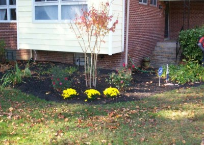 Flower Bed Enhancement8