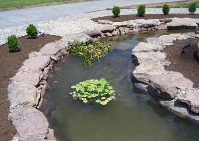 Water Features (9)